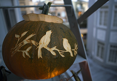 Courtney Cerruti teaches this class with techniques from printmaking to create carved pumpkin designs. You'll have DIY Halloween ideas for silhouettes, glitter for your DIY Halloween party decorations.