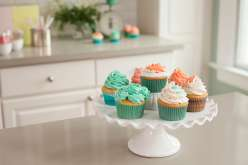 Emily Tatak from Wiltons teaches piping basics, consistency and color of buttercream, filling a cake-decorating bag, how to make pretty rosettes, classic swirls, adding stripes!
