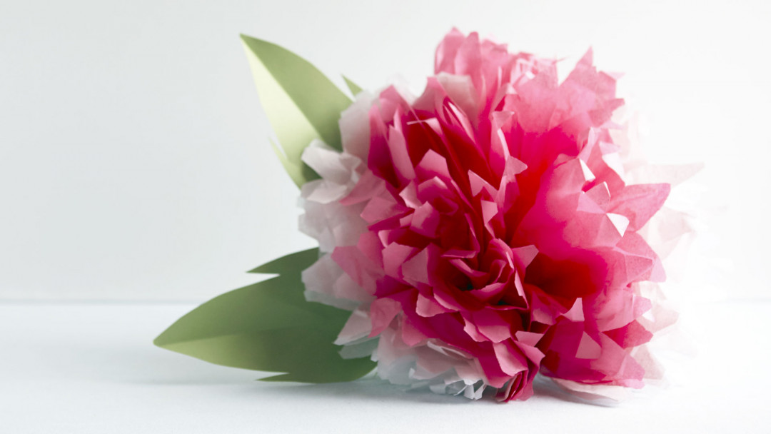 Make Tissue Paper Pompoms by Courtney Cerruti