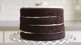 Bake a Naked, Layered Chocolate Cake