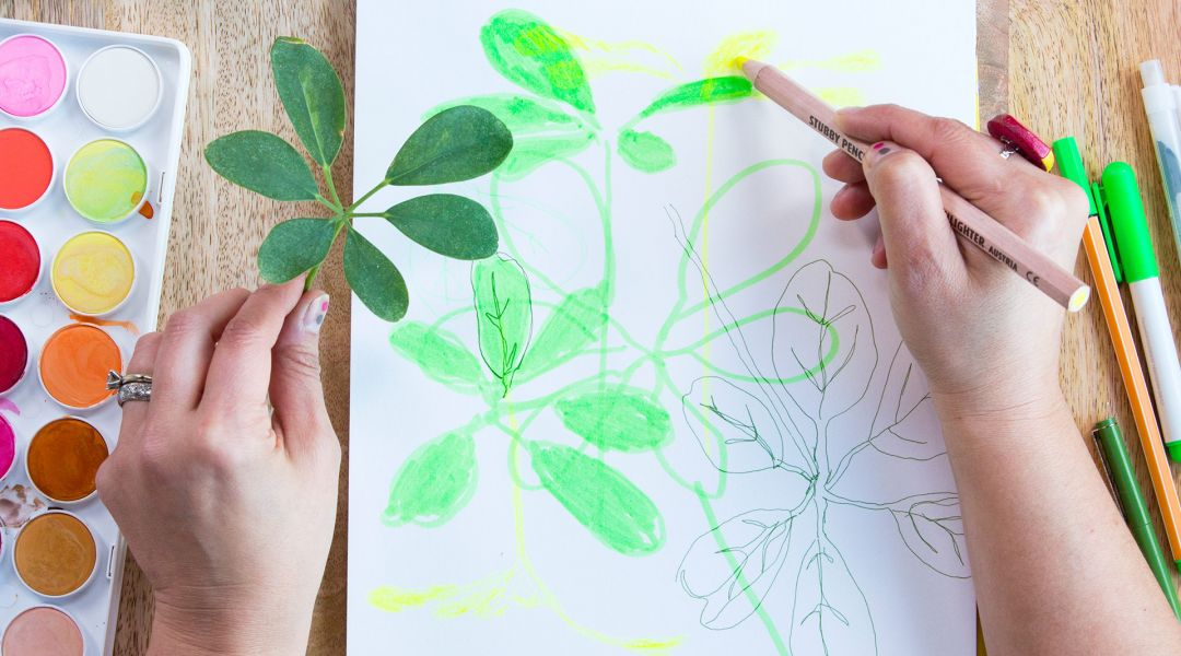 Daily Drawing Challenge: Tracing Shadows with Lisa Solomon