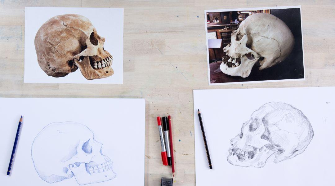 Drawing Skulls: 6/28/18
