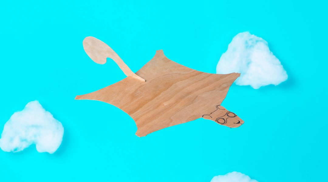 STEAM: Make a Flying Squirrel Glider
