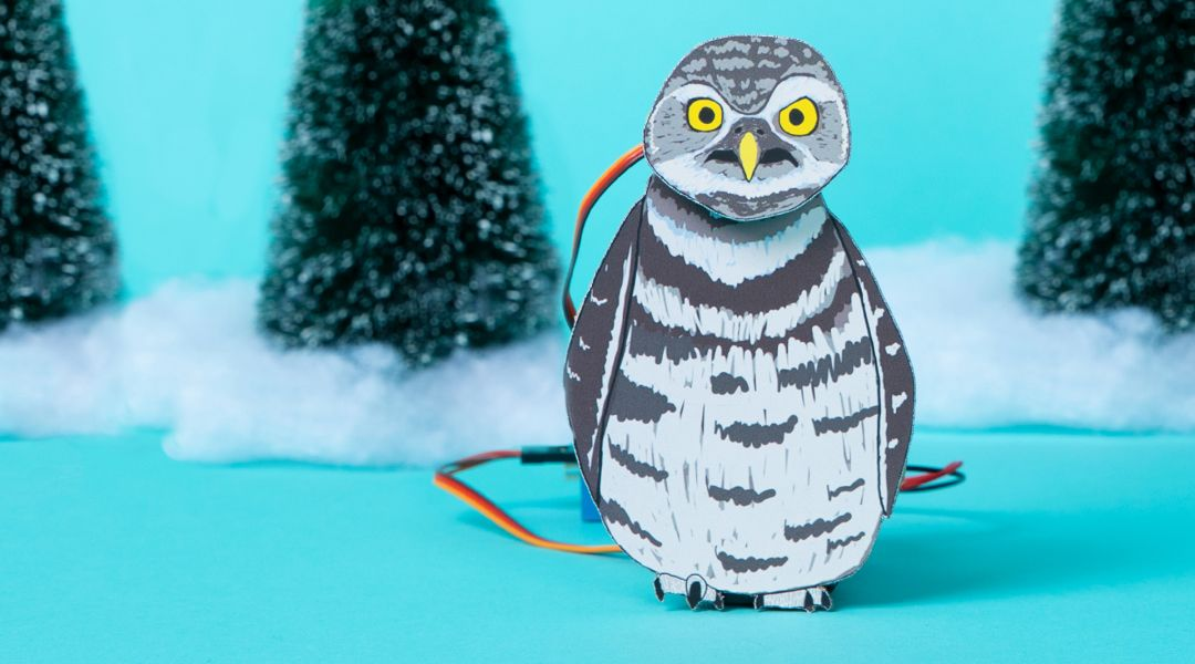 STEAM: Make an Animatronic Owl Figure