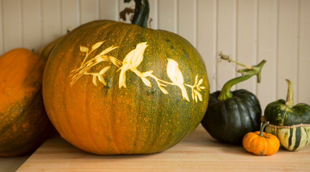 Courtney Cerruti teaches this class with techniques from printmaking to create carved pumpkin designs. You'll have DIY Halloween ideas for silhouettes, glitter for your DIY Halloween party decorations. - Creativebug