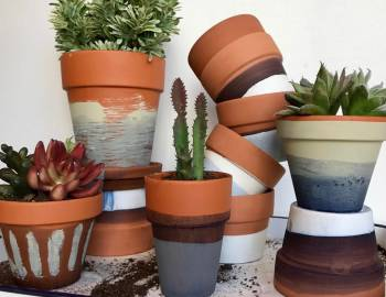 Dyed and Painted Pots: 2/28/17