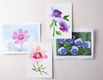 Daily Painting Challenge: 31 Flowers to Paint with Yao Cheng