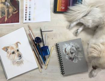 Colored Pencil Pet Portraits: 5/8/18