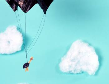 STEAM: Make a Parachuting Ostrich