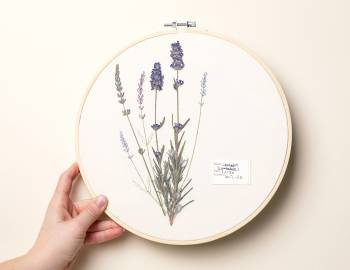 Thread Painting: Embroider with Pressed Flowers