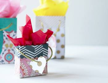 Cricut Crafts: DIY Gift Bags